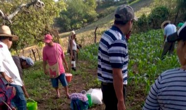 Realizan antorchistas de Mochitlán importante actividad económica