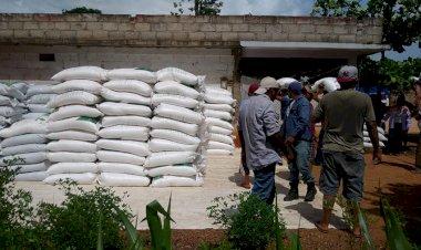 Lucha campesina sigue dando frutos en Veracruz